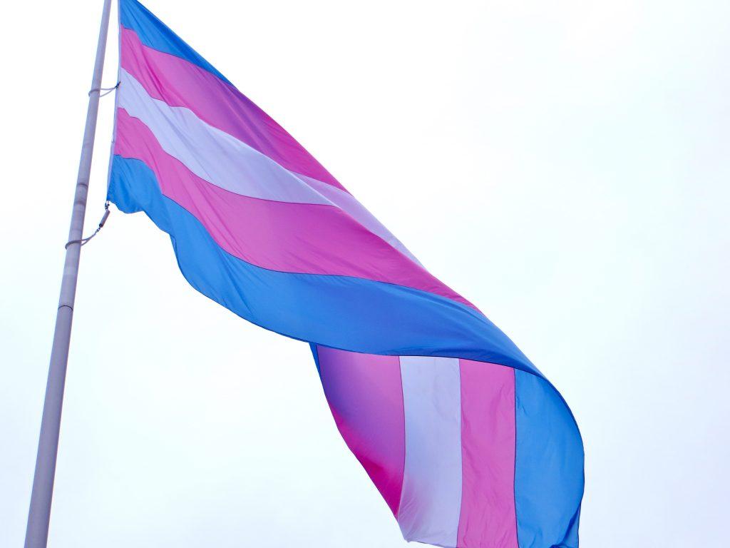Bandeira do Orgulho Transgênero